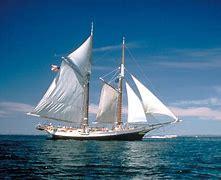 Nautica Voyage Musk
